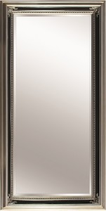 Silver Framed Mirrors: Silver/Black Ornate Mirror (2 sizes)